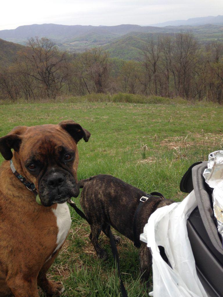 Road Trip 2015-spring edition 128