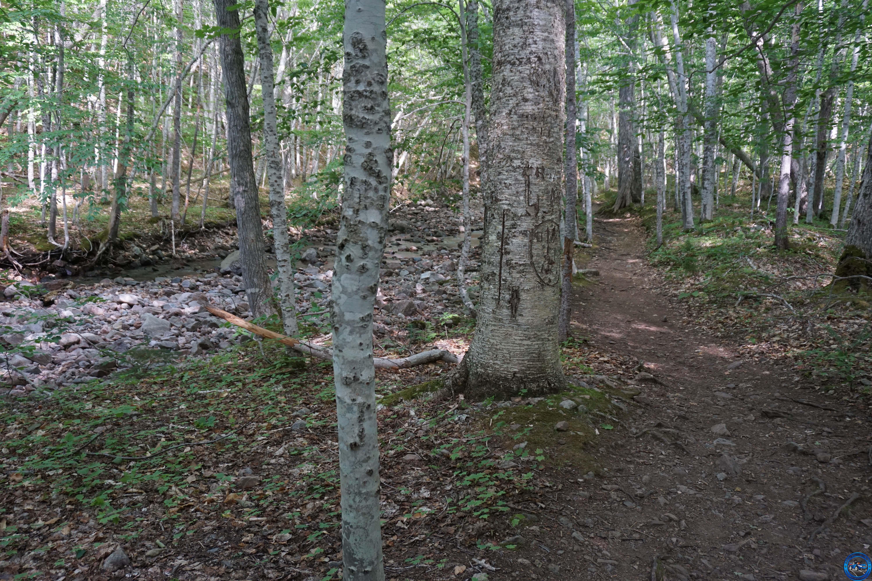 cb trail