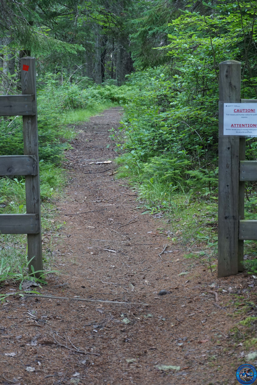 kou trail